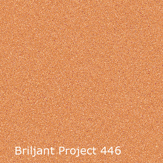 Briljant Project | Collectie projectvinyl | Interfloor Tapijt - Vinyl | kleurstaal
