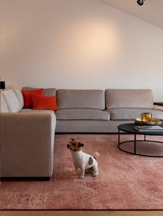 Image 16-17 – Mystique Blossom 924 'Pink Flower' – Carpet Living